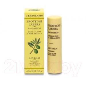 Бальзам для губ L'Erbolario Защитный с оливковым маслом и маслом чайного дерева