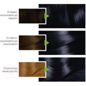 Крем-краска для волос Garnier Color Naturals Creme 2.10